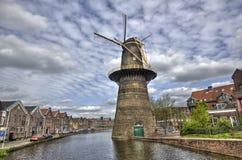 holland ampuły wiatraczek Zdjęcia Royalty Free