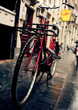 Holland Bicycles Royaltyfria Bilder