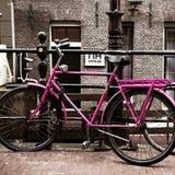 Holland Bicycles Royaltyfria Foton