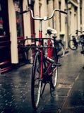 Holland Bicycles Fotografering för Bildbyråer