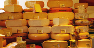 Holland cheeses at market. Stock Photography
