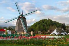 Holland garden Stock Photo