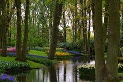 Holland in de lente stock fotografie