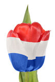 Holland flag Royalty Free Stock Images