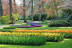 Holland, Keukenhof Royalty-vrije Stock Afbeelding