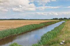 Holland landscape. A Summer landscape in Holland Royalty Free Stock Photo