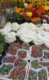 Holland market Stock Photos