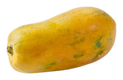 Holland Papaya Stock Image