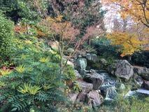 Holland Park royaltyfri fotografi