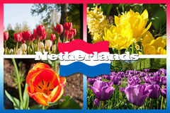 Holland Postcard Royalty Free Stock Photography