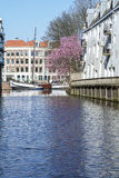 Holland river with small boat and cherry-tree in the spring Royalty Free Stock Photo