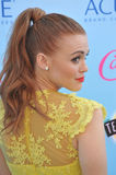 Holland Roden Royalty Free Stock Photography