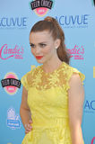 Holland Roden Royalty Free Stock Photo