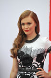 Holland Roden Royalty Free Stock Images