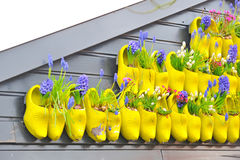 Holland traditional yellow wooden shoes Royalty Free Stock Image