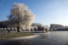 holland vinter Fotografering för Bildbyråer