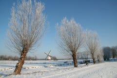 holland vinter Arkivfoton