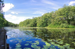 Holland Waterland Stock Image