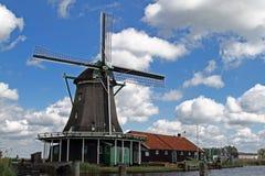 holland wiatraczki Zdjęcia Stock