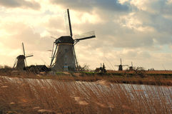holland windmills Arkivbilder
