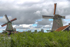 holland windmills Arkivbild