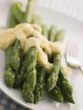 Hollandaise caldo dell'asparago Immagini Stock