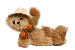 holliday nalle för björn Royaltyfria Bilder