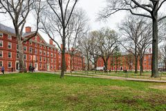 Hollis Hall e Stoughton Salão na jarda Cambridge miliampère de Harvard Foto de Stock Royalty Free