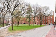 Hollis Hall en Stoughton-Zaal in de Werf Cambridge van Harvard Stock Fotografie