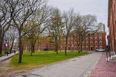 Hollis Hall et Stoughton Hall à la cour de Harvard Photos stock
