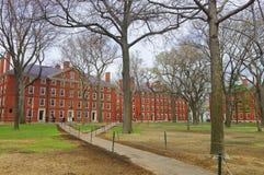 Hollis Hall et Stoughton Hall dans la cour de Harvard Image libre de droits