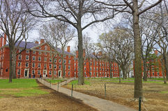 Hollis Hall y Stoughton Pasillo en la yarda de Harvard Imagen de archivo libre de regalías