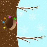 Hollow, decorated with a Garland on a tree Royalty Free Stock Photos