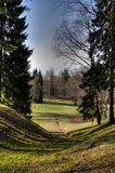 Hollow in the field. In Pavlovsk Royalty Free Stock Image