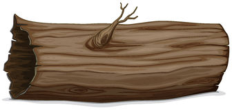 Hollow log Royalty Free Stock Images