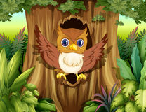 A hollow tree with an owl Royalty Free Stock Photography
