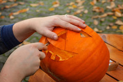 Hollowing out a pumpkin to prepare halloween lantern Royalty Free Stock Photography