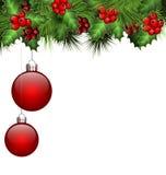 Holly και έλατο με τις σφαίρες Χριστουγέννων στο λευκό ελεύθερη απεικόνιση δικαιώματος