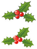 Holly. Berries with and without stroking Stock Photography