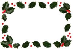 Holly. Leaf and Berry Border stock photo