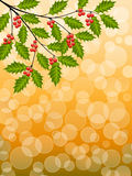 Holly. Abstract background with a holly branch. Vector illustration Stock Photo
