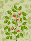 Holly. Abstract background with a holly branch. Vector illustration Royalty Free Stock Photo