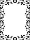 Holly. Floral frame with a holly branch. Vector illustration Royalty Free Stock Photos