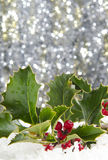 Holly. With red berries in snow with sparkling background Stock Photo