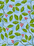 Holly Stock Images