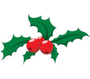 Holly. Christmas holly with red berries Royalty Free Stock Images