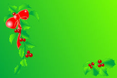 Holly. With berries, illustration on green background Royalty Free Stock Photography
