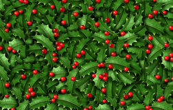 Holly Background Royalty Free Stock Photo