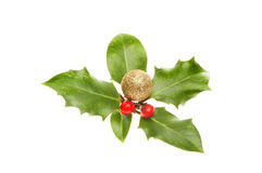 Holly with bauble and berries Stock Images