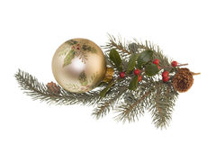 Holly bauble on fir branch Stock Image